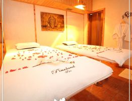 Pineland-Hotel-Hotels-4-stars-Hammana-South-Mount-Lebanon